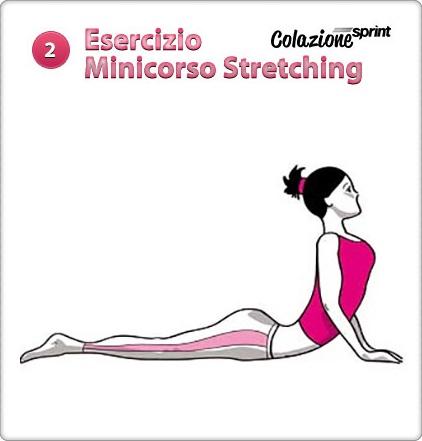 stretching esercizio cobra